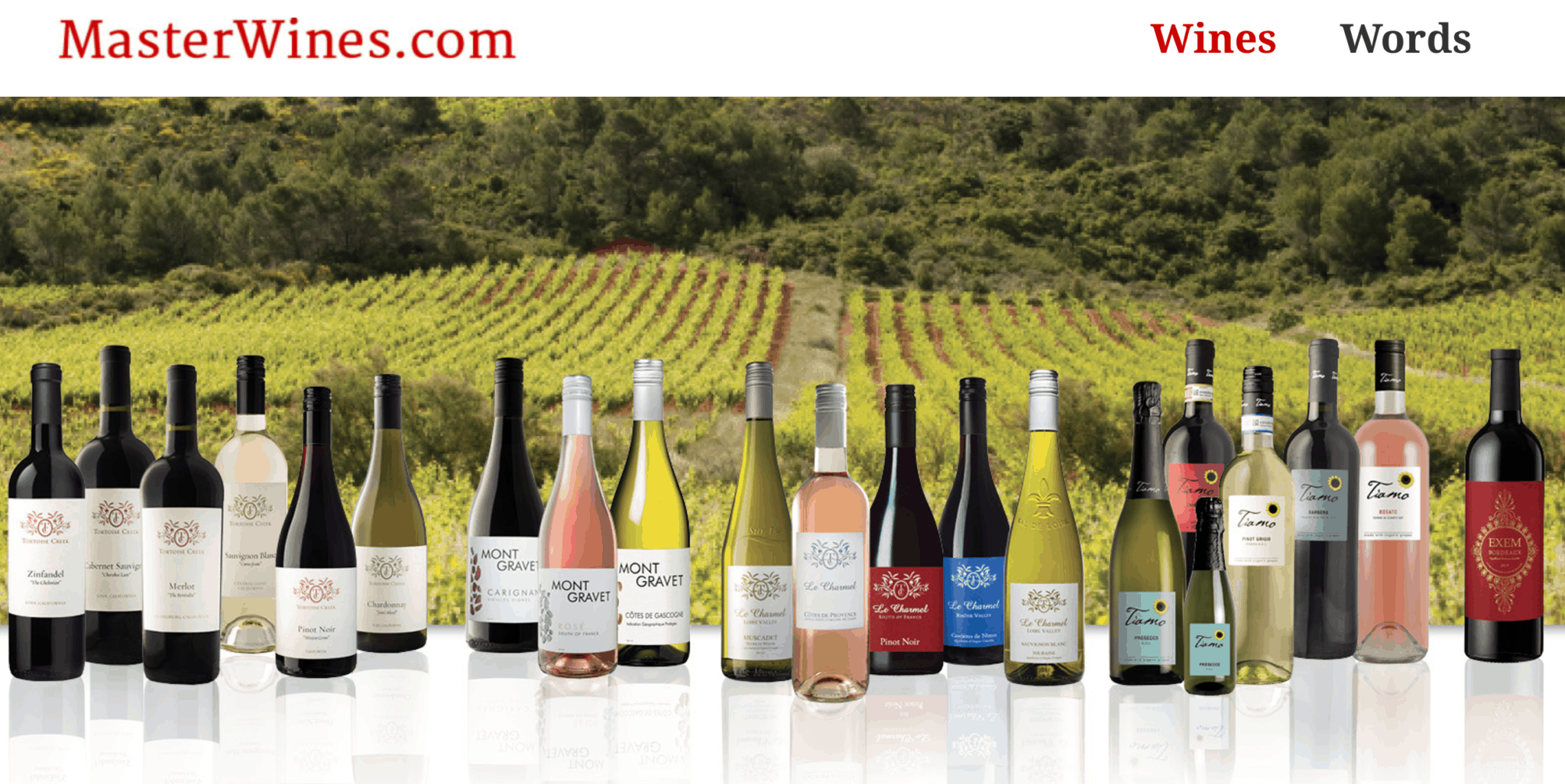 Master Wines - Holland Web Marketing